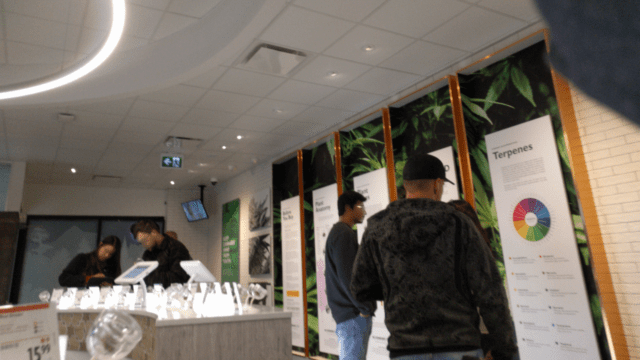 Grading the Kamloops Cannabis Store: Is it Worth a Visit?