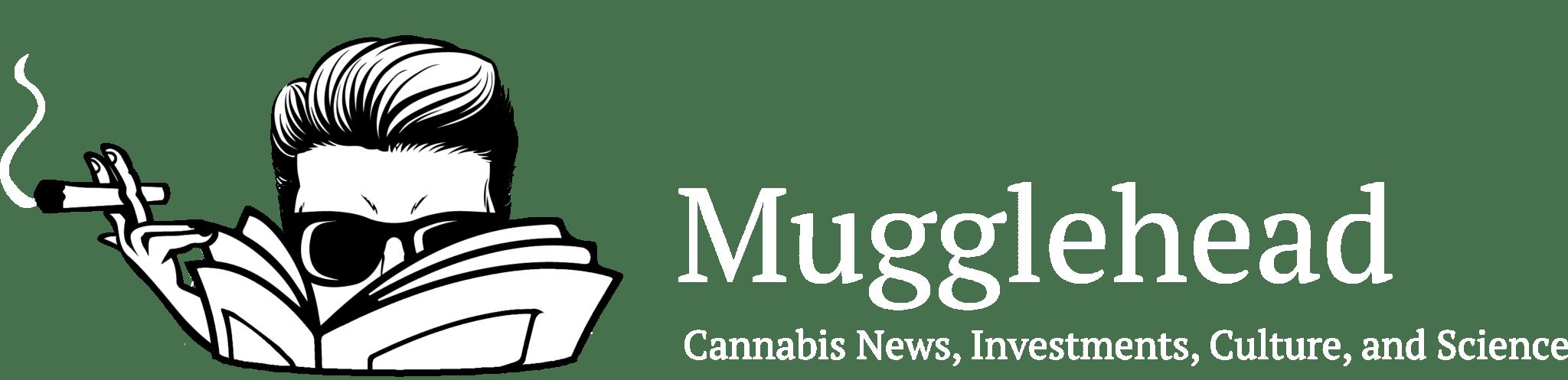 Mugglehead