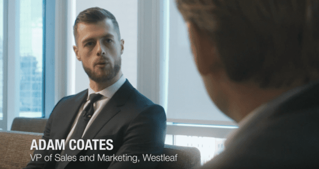 Westleaf's world-leading management team