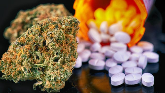 Legal Medical Marijuana Doesn't Reduce Opioid Deaths, Study Suggests