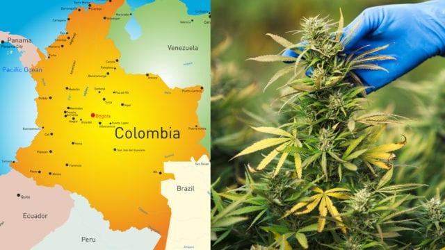 https://mk0muggleheadfl9s2sr.kinstacdn.com/wp-content/uploads/2019/06/colombia.cannabis-640x360.jpg