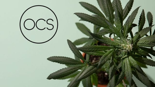 https://mugglehead.com/wp-content/uploads/2019/06/ontario-cannabis-store-image-640x360.jpg