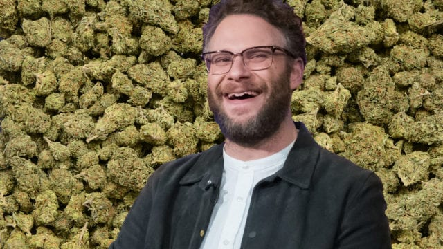 https://mugglehead.com/wp-content/uploads/2019/06/seth.rogen_.weed_.illustration-640x360.jpg