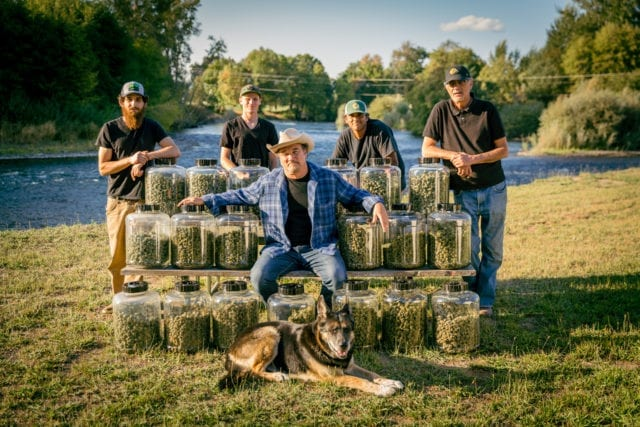 Comedy legend Jim Belushi has discovered a passion for growing and selling cannabis in Oregon and now wants to take his Blues Brothers pot to Illinois.