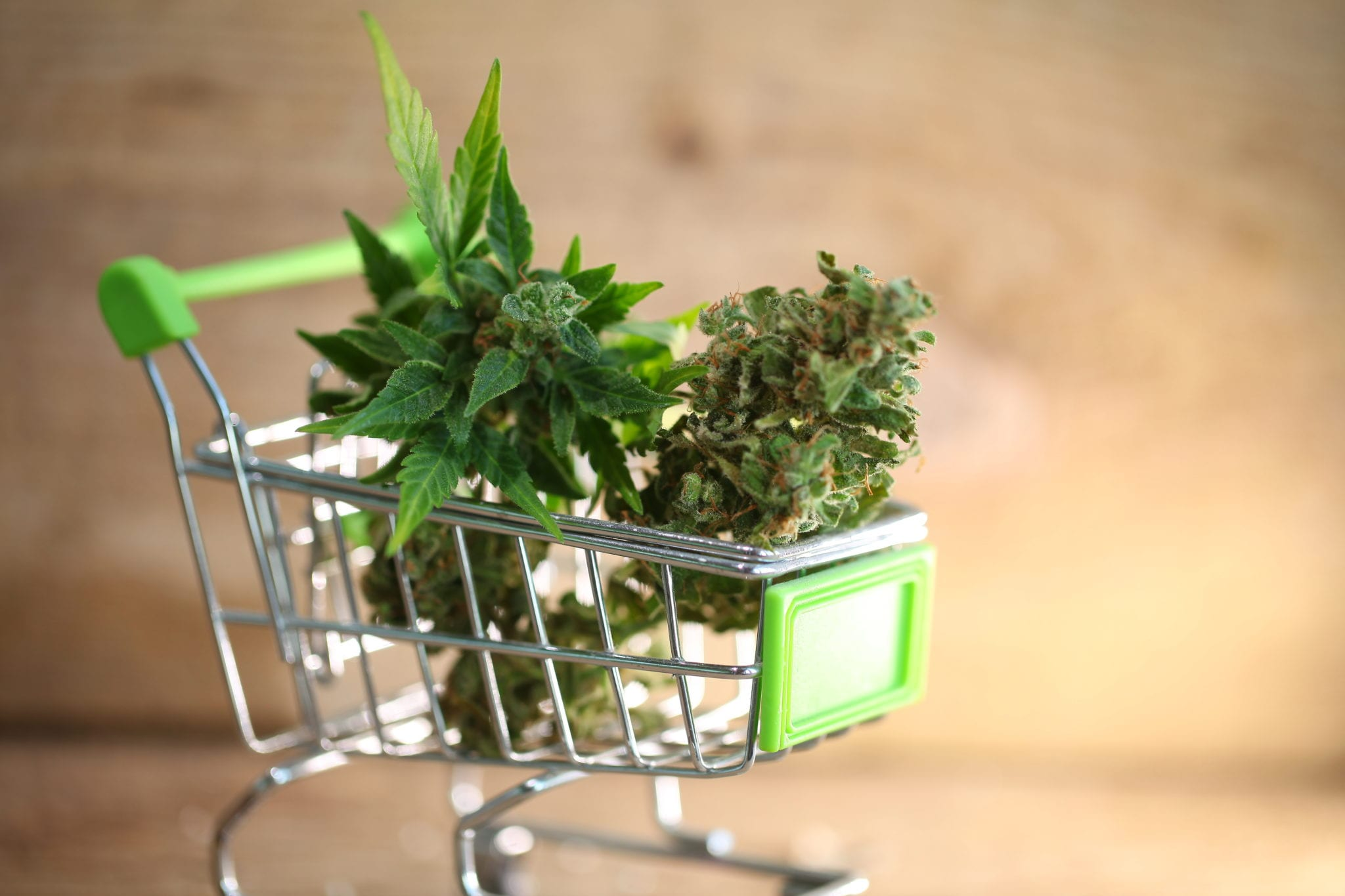 Canadian Cannabis Sales Jump 15% In May As More Stores Open