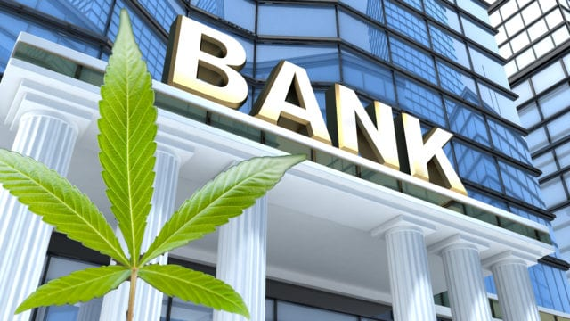 https://mugglehead.com/wp-content/uploads/2019/07/cannabis-bank-photo-illustration.EDIT_-640x360.jpg