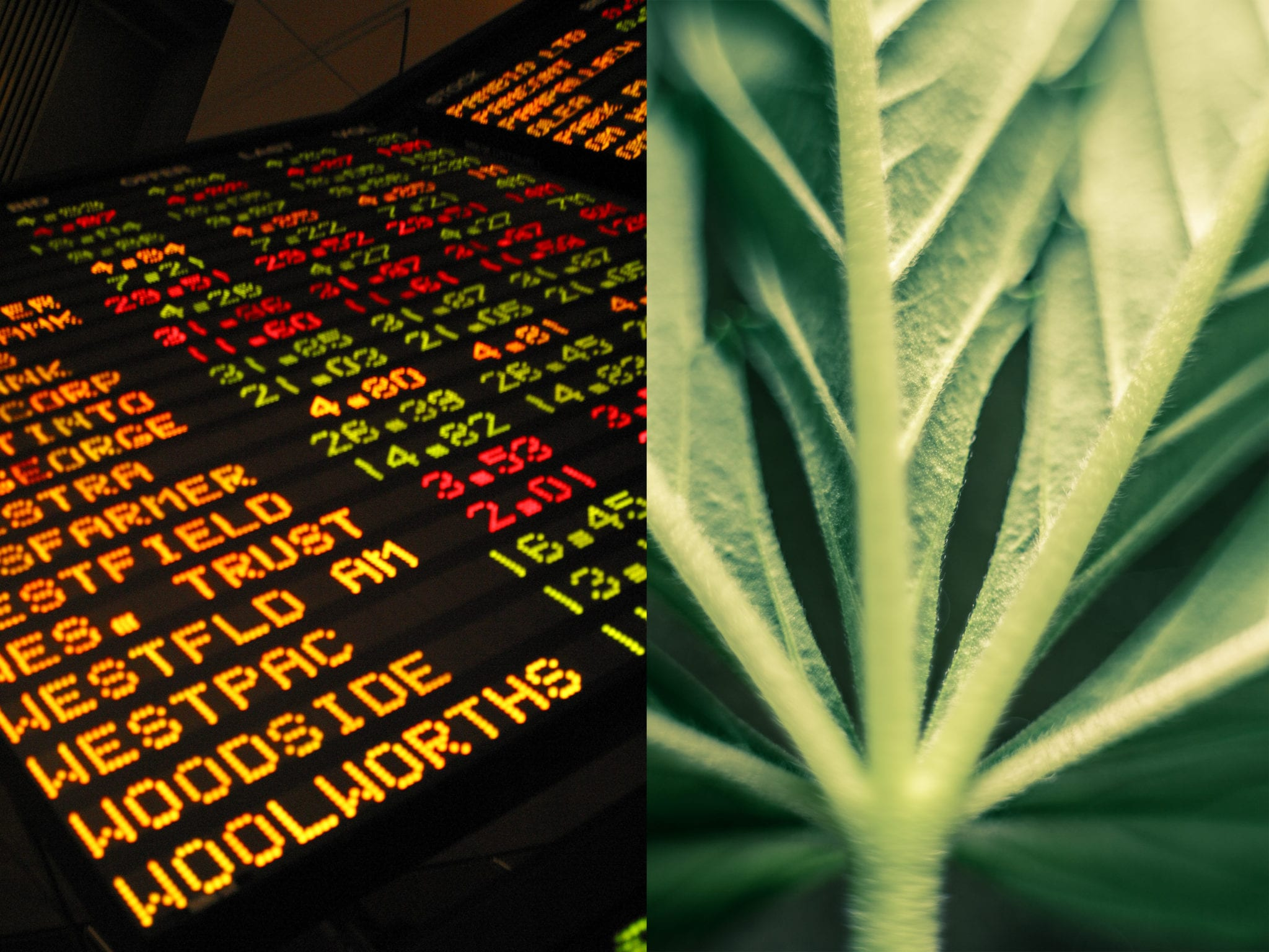 Vancouver-based cannabis company BevCanna Enterprises Inc. (CSE:BEV) started trading on the Canadian Securities Exchange (CSE) on Tuesday.
