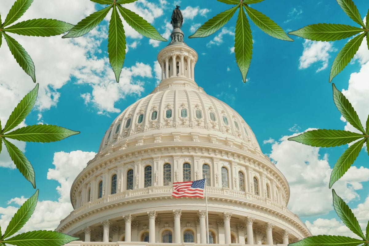 U.S. Lawmakers Look to Legalize Pot in 'Historic' Cannabis Hearing