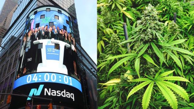 https://mk0muggleheadfl9s2sr.kinstacdn.com/wp-content/uploads/2019/07/nasdaq.cannabis-640x360.jpg