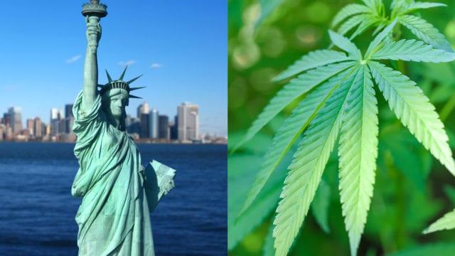 https://mugglehead.com/wp-content/uploads/2019/07/new-york-cannabis-illustration.edited-640x360.jpg