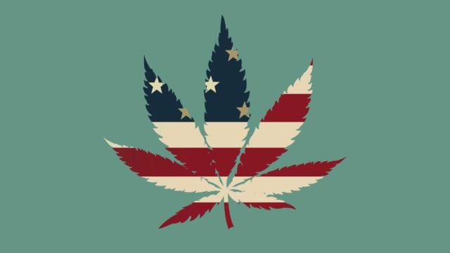 https://mugglehead.com/wp-content/uploads/2019/08/cannabis-american-leaf-640x360.jpg
