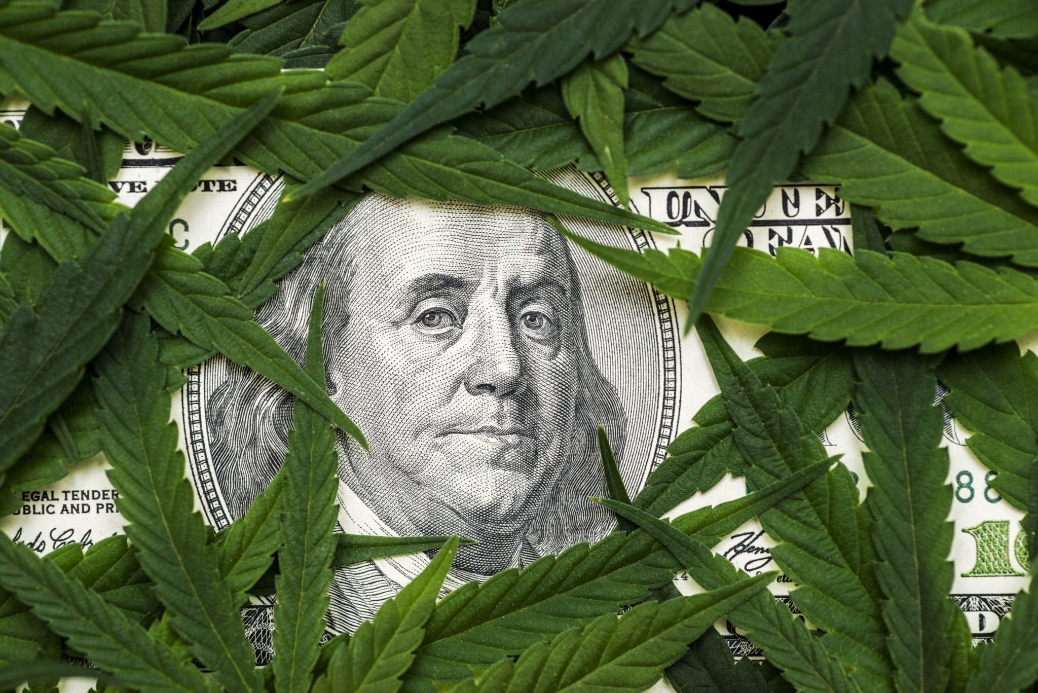 Cannabis Sector Freefall Didn't Let up in September