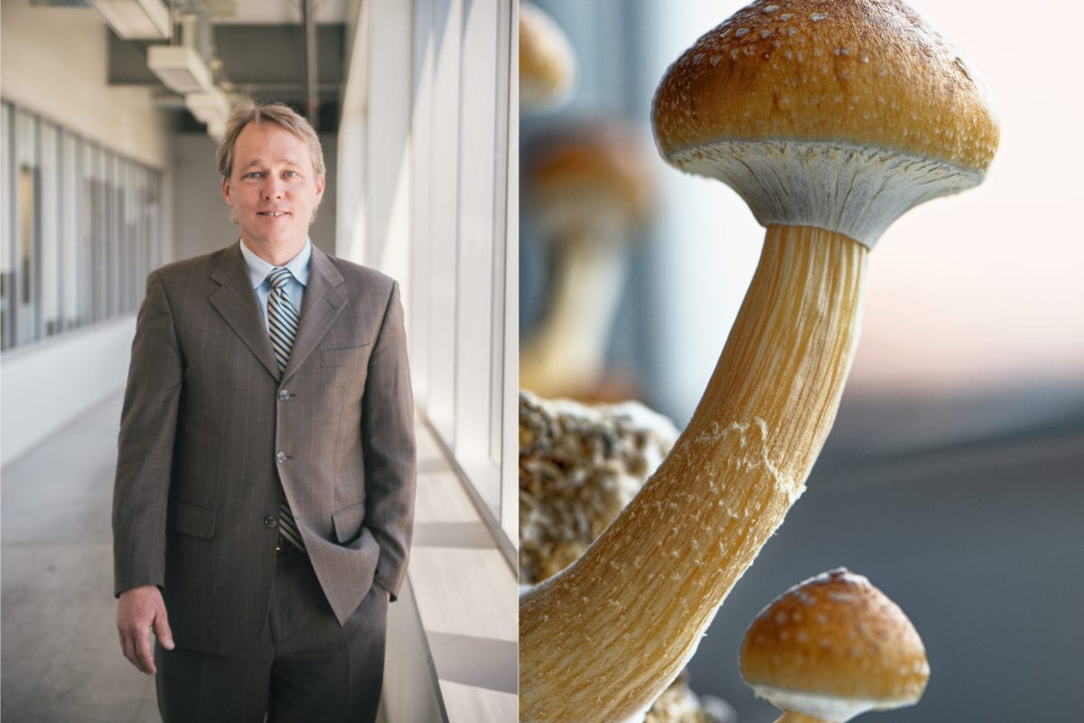 Canopy Founder Bruce Linton Joins Two Pot Firms, Sees Big Opportunity in Psychedelics