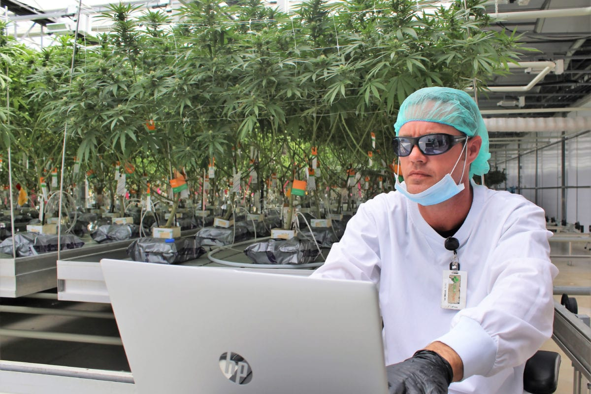 CannTrust Says Health Canada Suspended its Cannabis Sales Licence