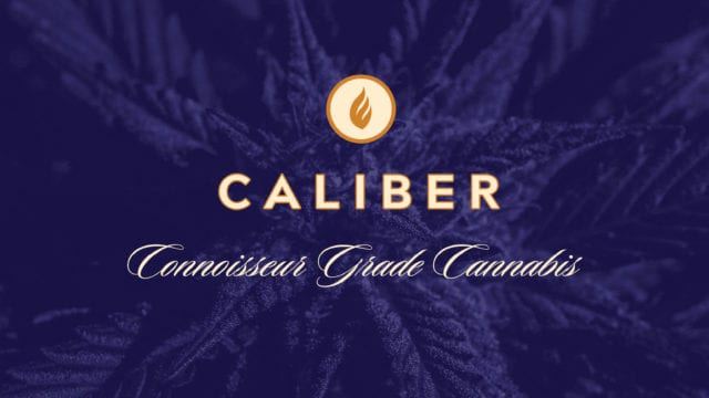 https://mugglehead.com/wp-content/uploads/2019/10/Caliber-Logo-640x360.jpg