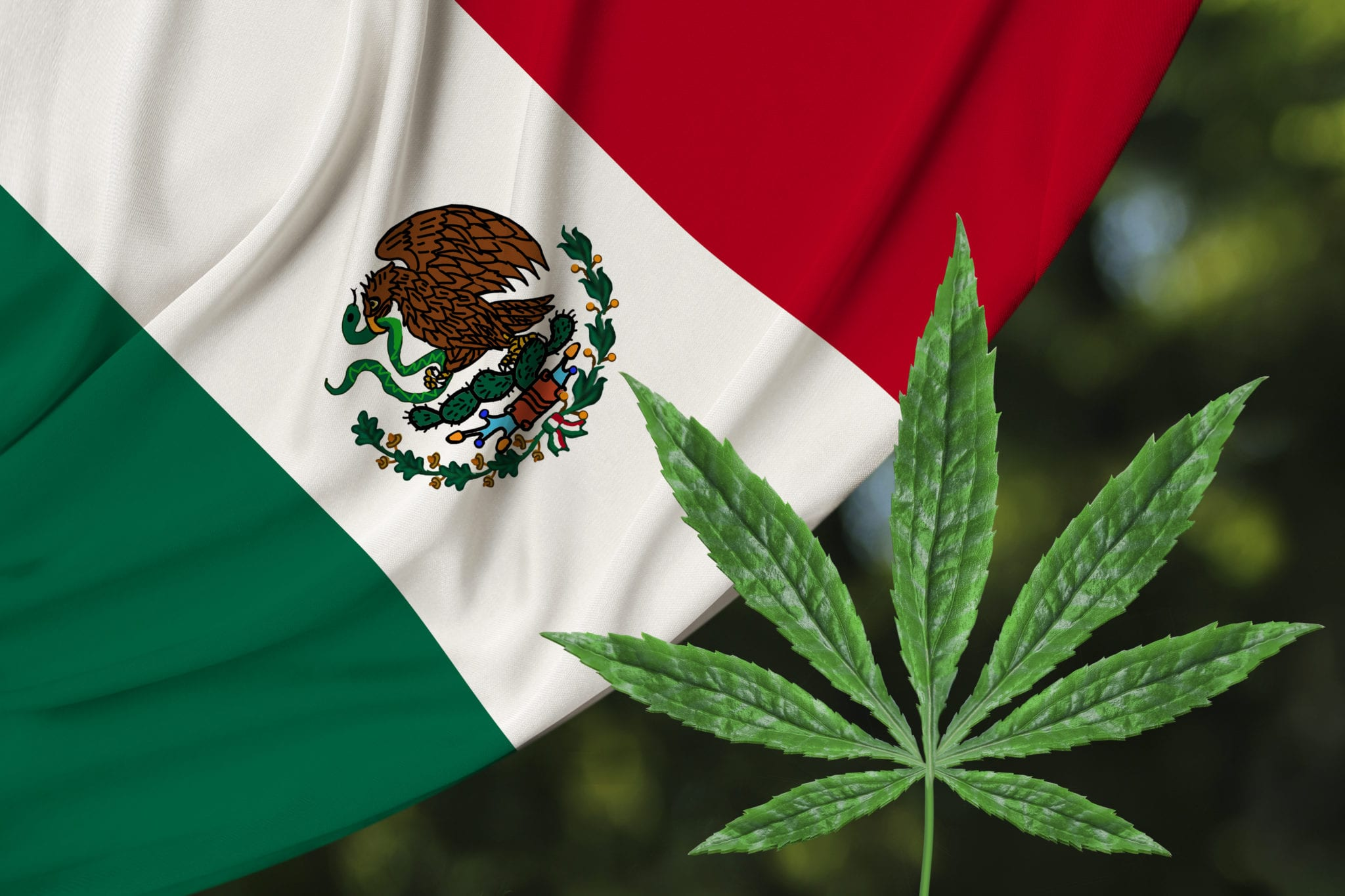 Mexico Could Legalize Cannabis By the End of October