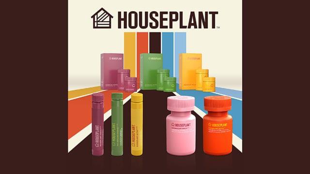 https://mk0muggleheadfl9s2sr.kinstacdn.com/wp-content/uploads/2019/10/houseplant-seth-rogen-EDIT-sharp-640x360.jpg