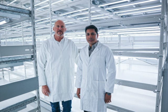 Segra granted licence to grow premium cannabis clones using tissue culture
