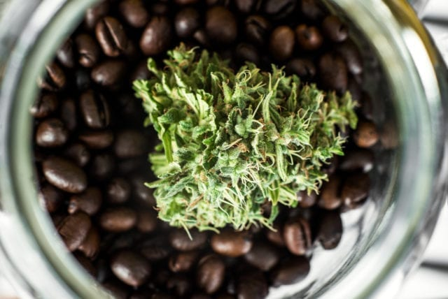Second Cup Gets Into Cannabis, Rebrands to Aegis Brands