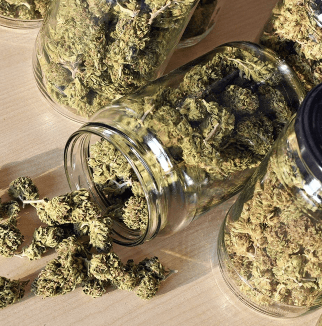 New Brunswick Turns to the Private Sector to Revitalize Cannabis Retail Stores