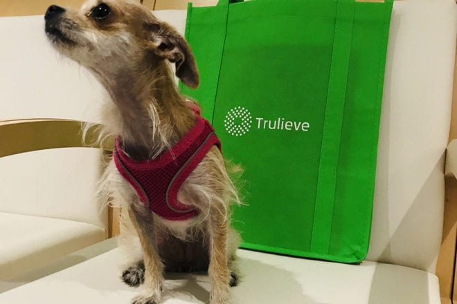 Trulieve Shows Up Northern Competitors With Q3 Revenue Beat