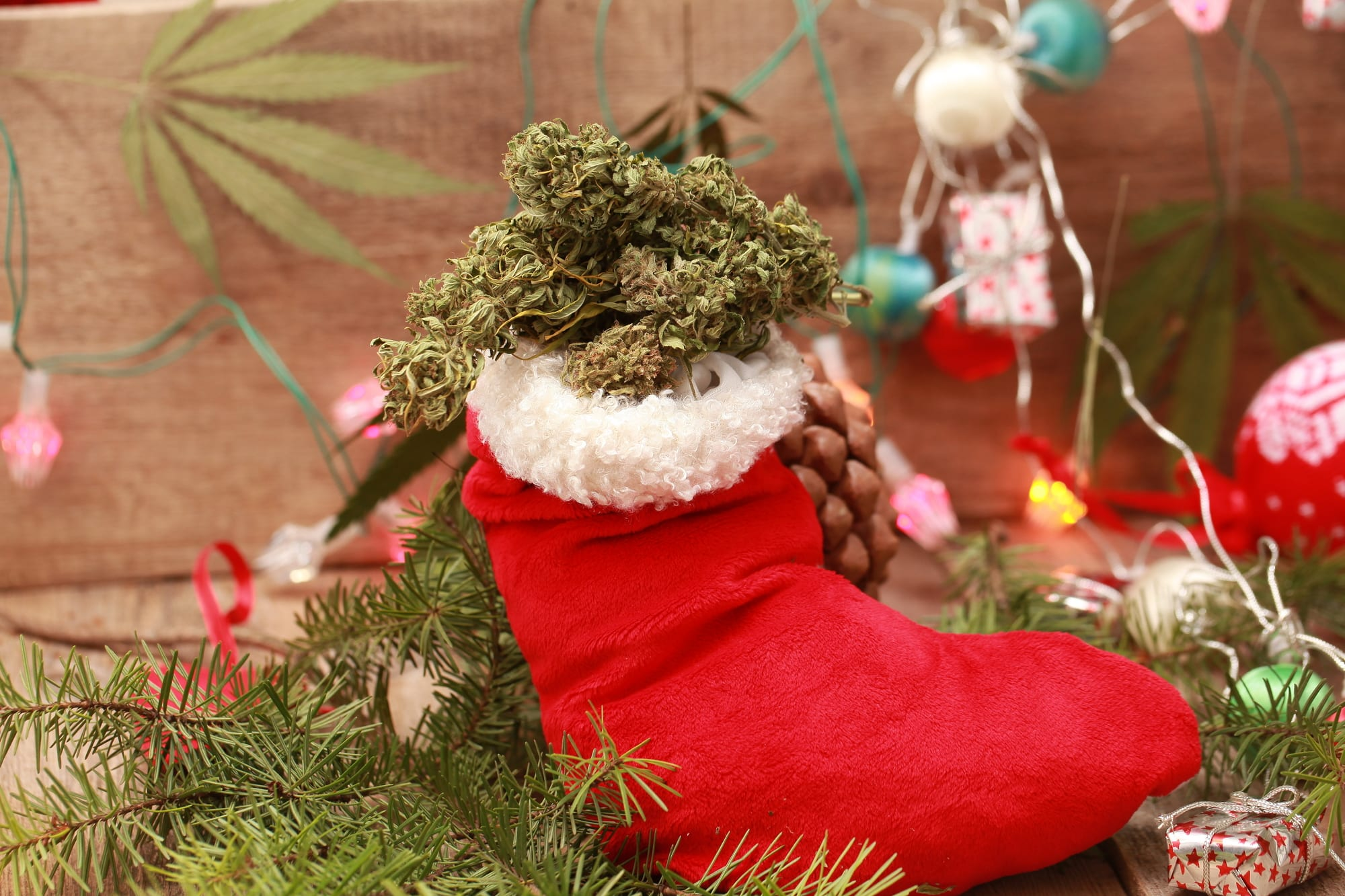 Cannabis 2.0 products blast off shelves in holiday release blitz