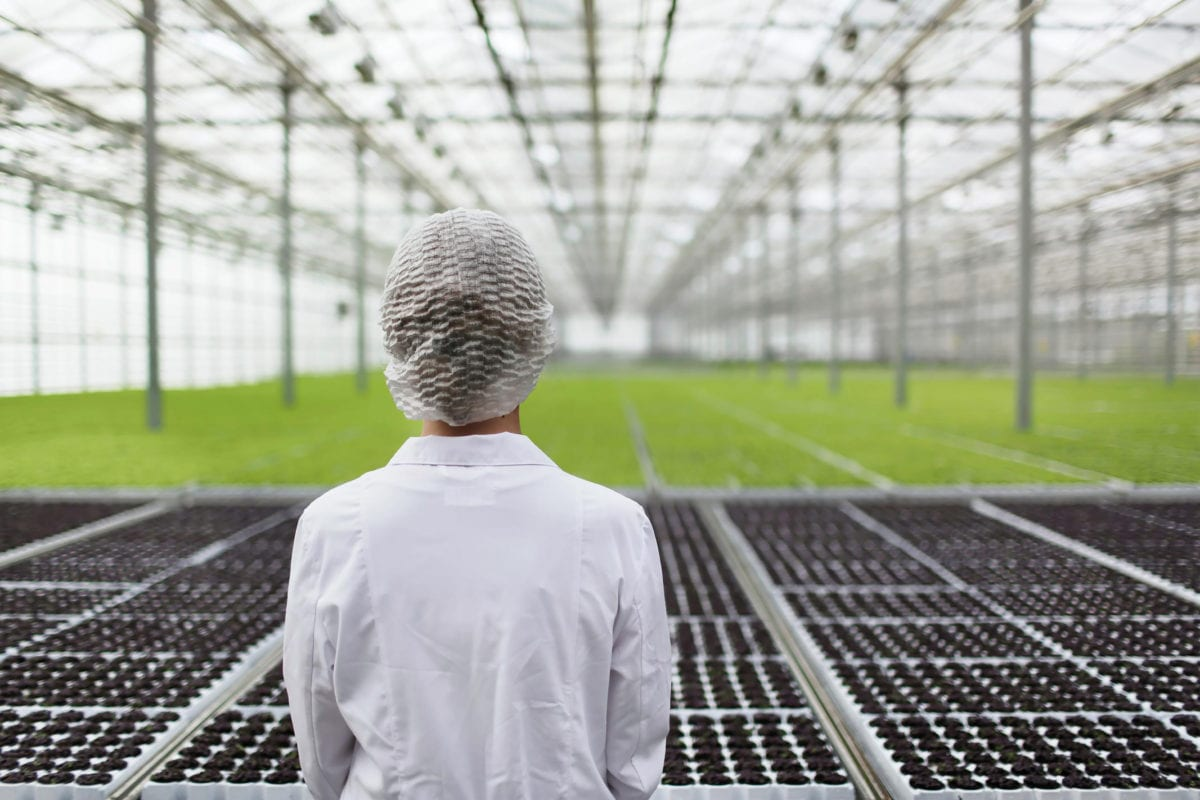 Aphria gains EU GMP certification to ship medical cannabis within Europe
