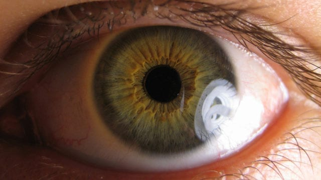 https://mugglehead.com/wp-content/uploads/2020/01/Cannabinol-CBN-the-main-ingredient-in-potential-treatments-for-glaucoma-and-a-rare-skin-disease-640x360.jpg