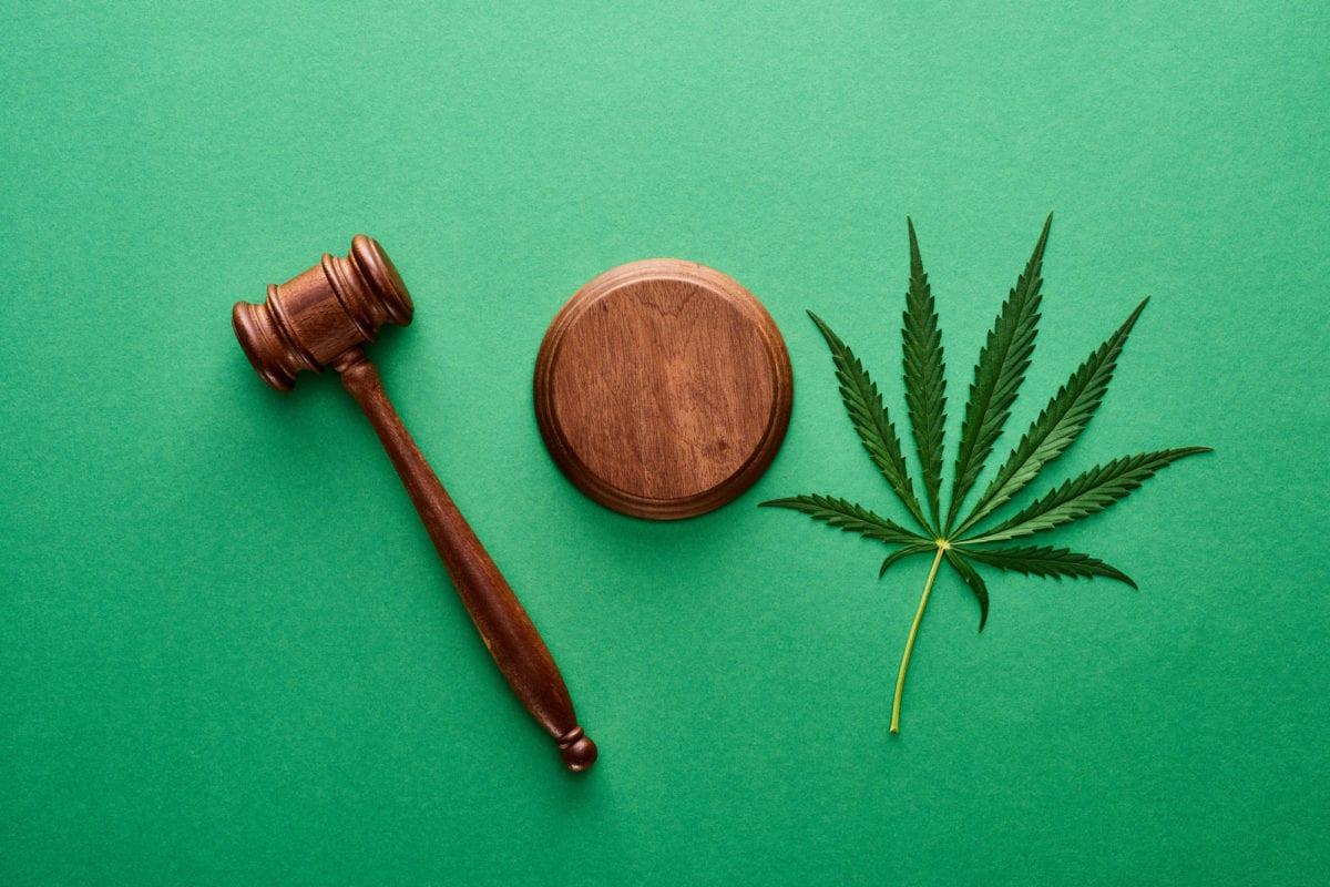 Leading law firm hires veteran cannabis lawyer Sativa Rasmussen
