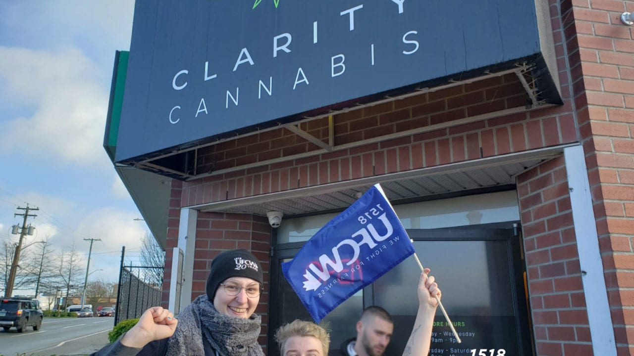 Victoria private cannabis workers first to unionize in Canada
