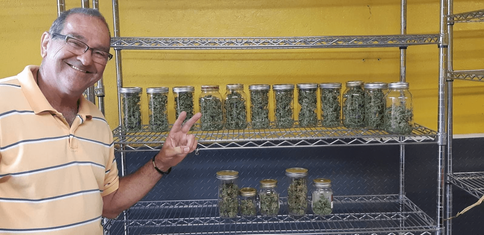 Sea Dog Farm micro cannabis on rack