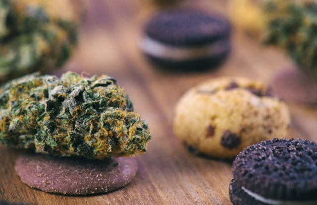 Would edible-only cannabis cafes work?