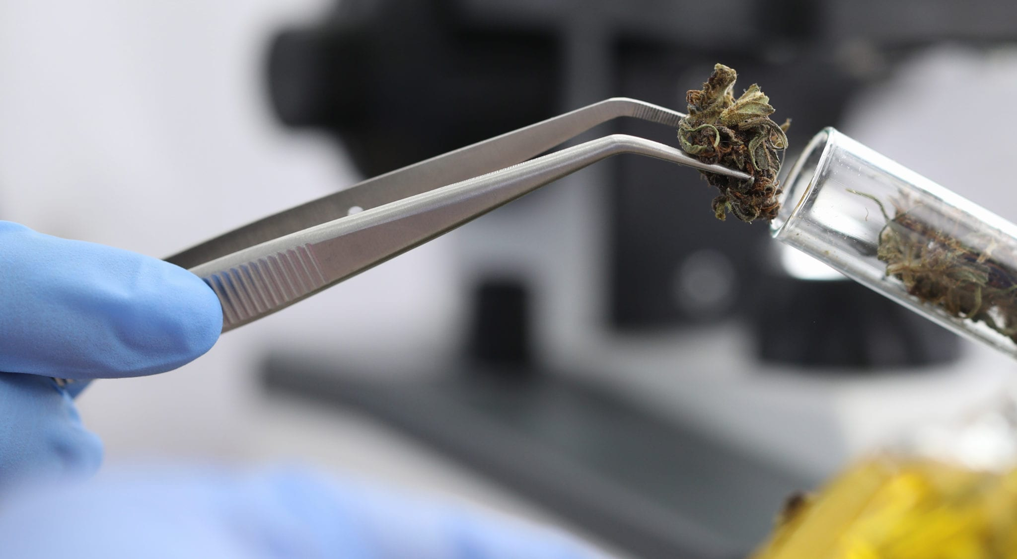 Tetra Bio-Pharma gets 5th orphan drug status for CBD topical