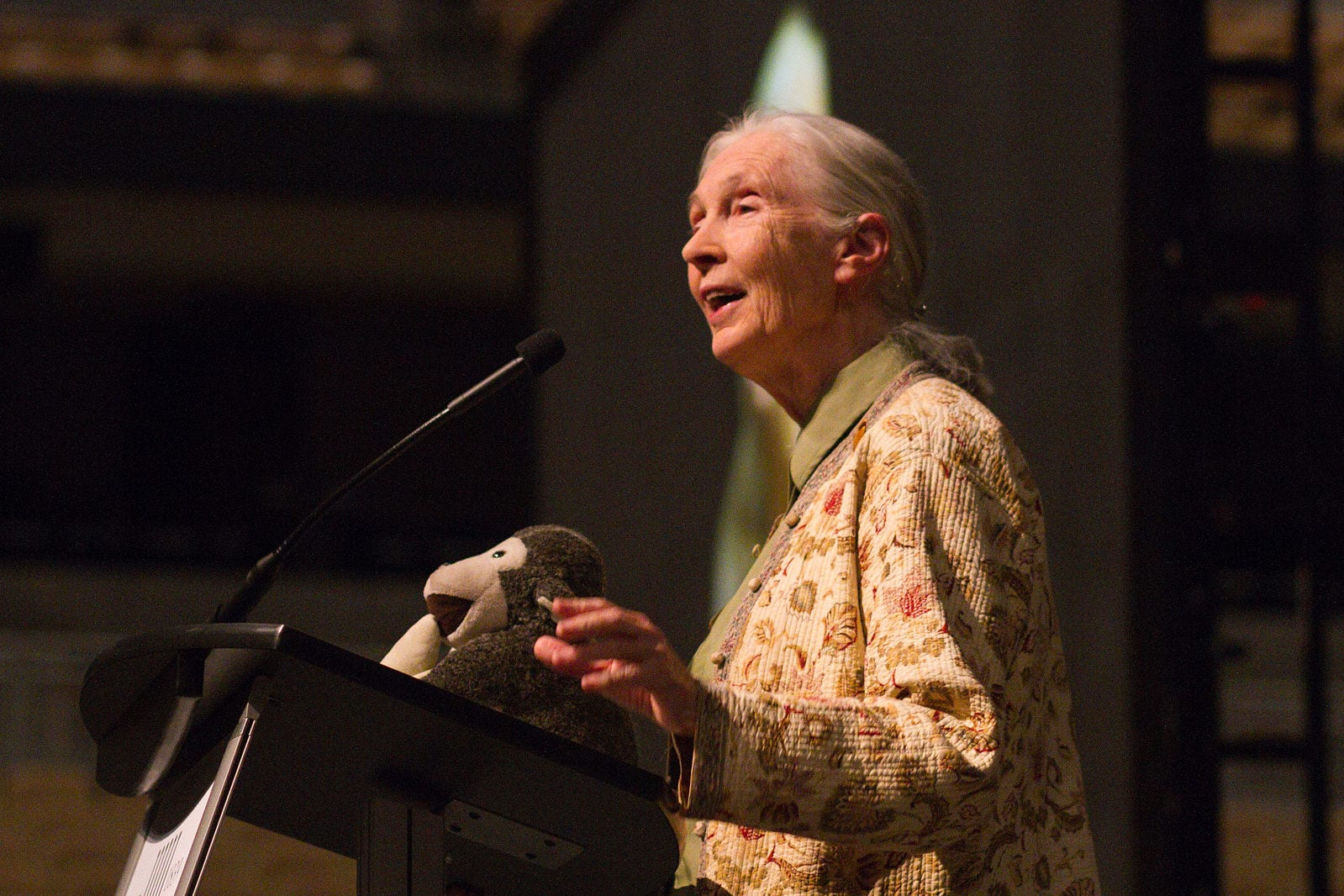 Jane Goodall partners with Neptune Wellness Solutions for forest-friendly hemp brand