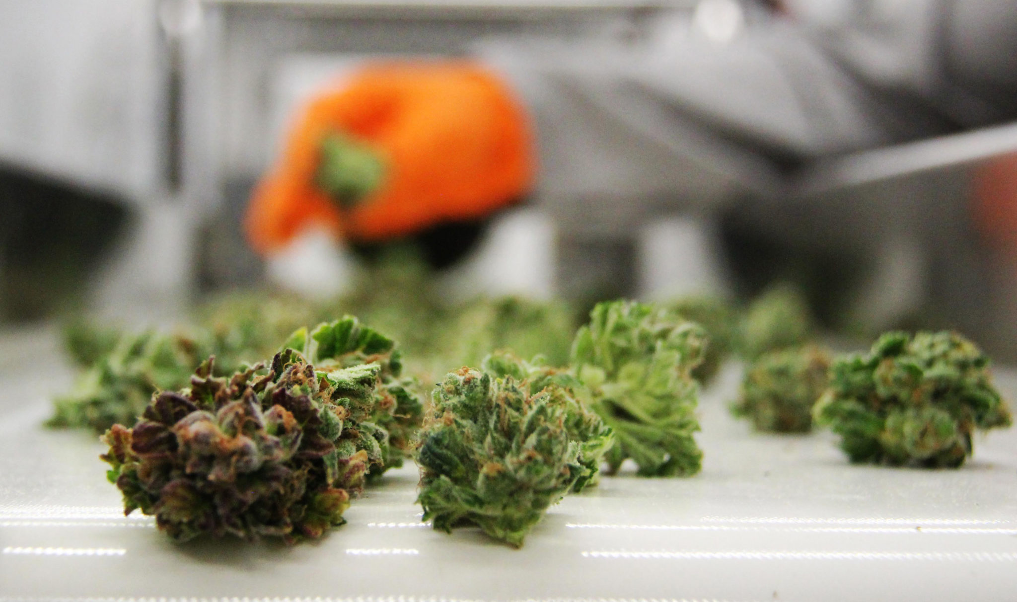 Canopy cuts undisclosed number of jobs from Ont. facility