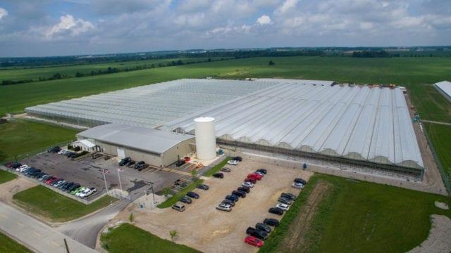 Tilray closes Ontario greenhouse as facility shutdown trend continues