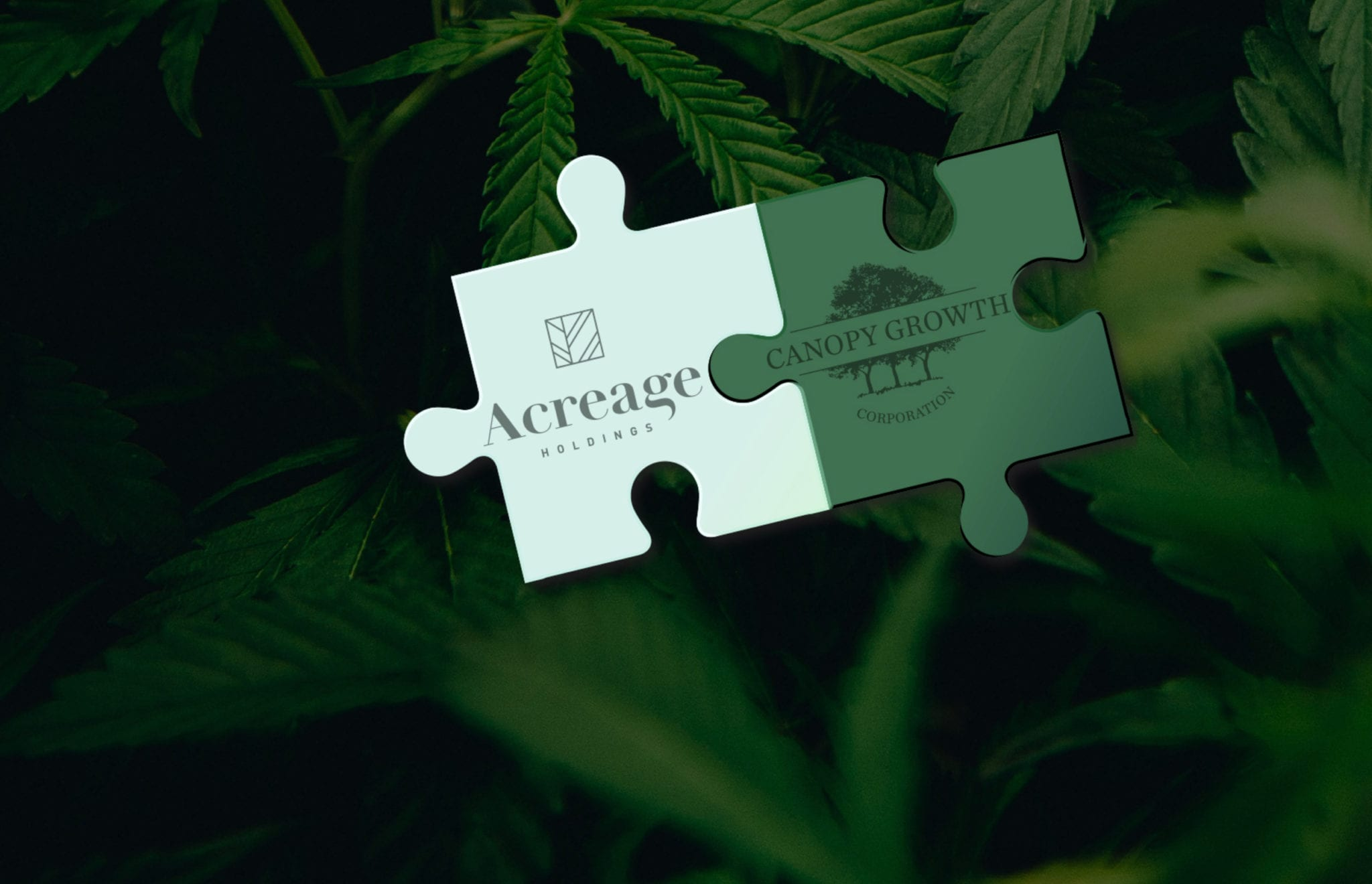 Acreage Holdings signs off on loan with 60% interest rate