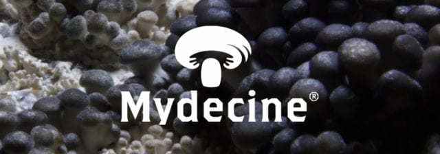 Psychedelic company Mydecine acquires firm focused on treating veterans
