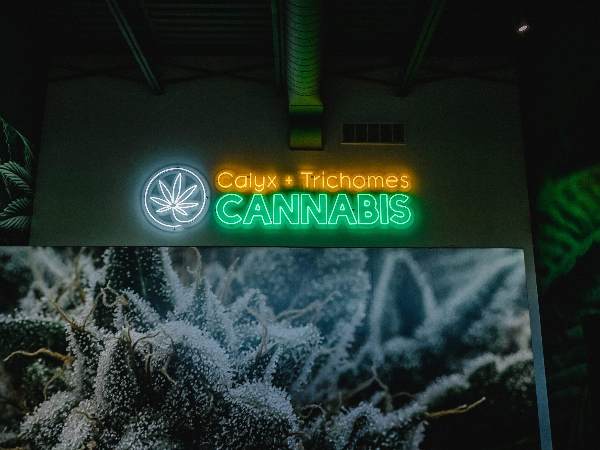 Behold, a weed store that looks like it actually sells weed