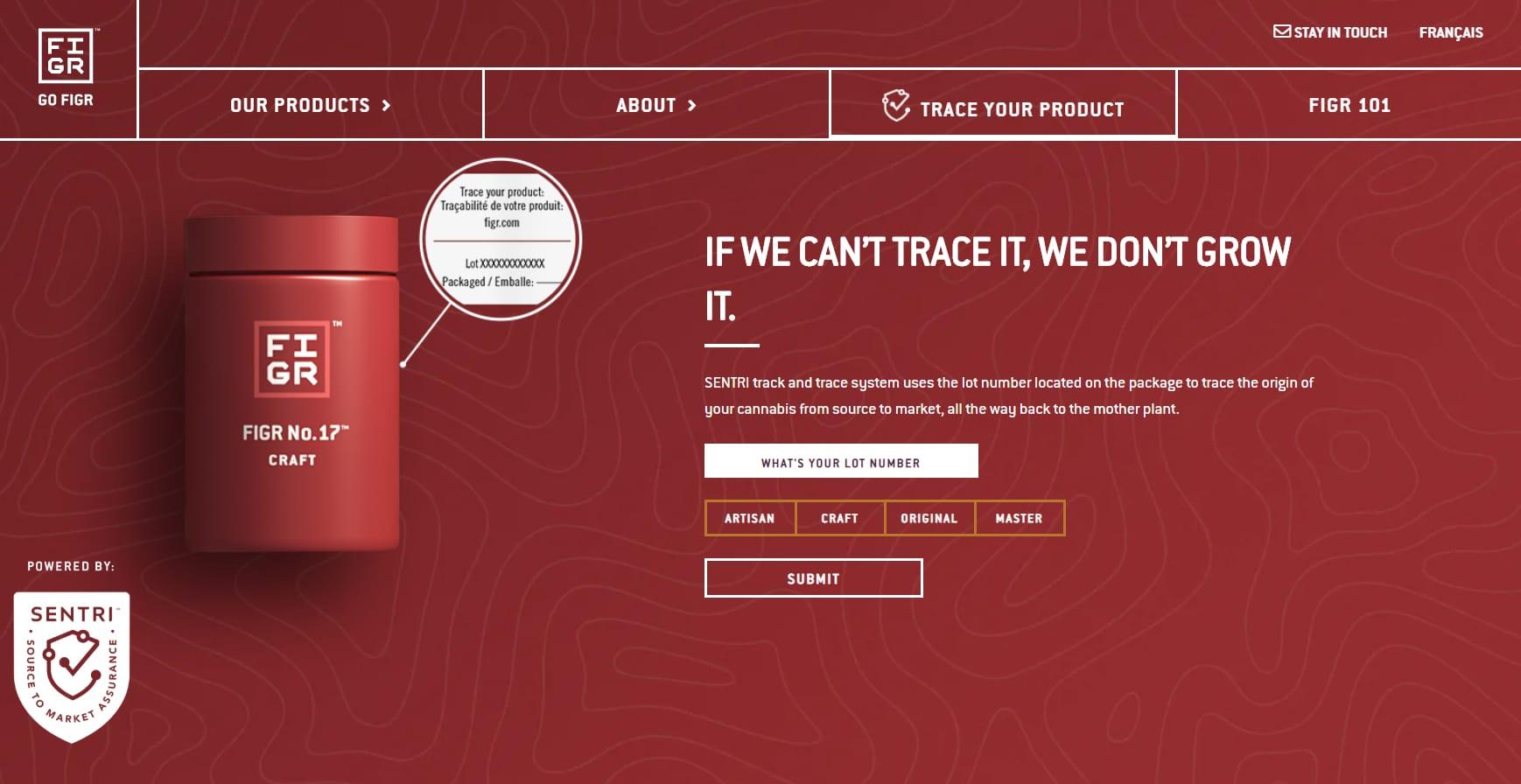 Online sales BC survey Figr Brands