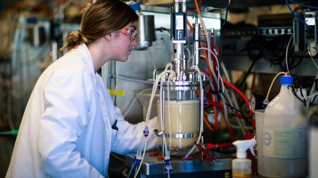 https://mk0muggleheadfl9s2sr.kinstacdn.com/wp-content/uploads/2020/09/Amyris-scales-production-of-first-yeast-created-cannabinoid-640x360.jpg