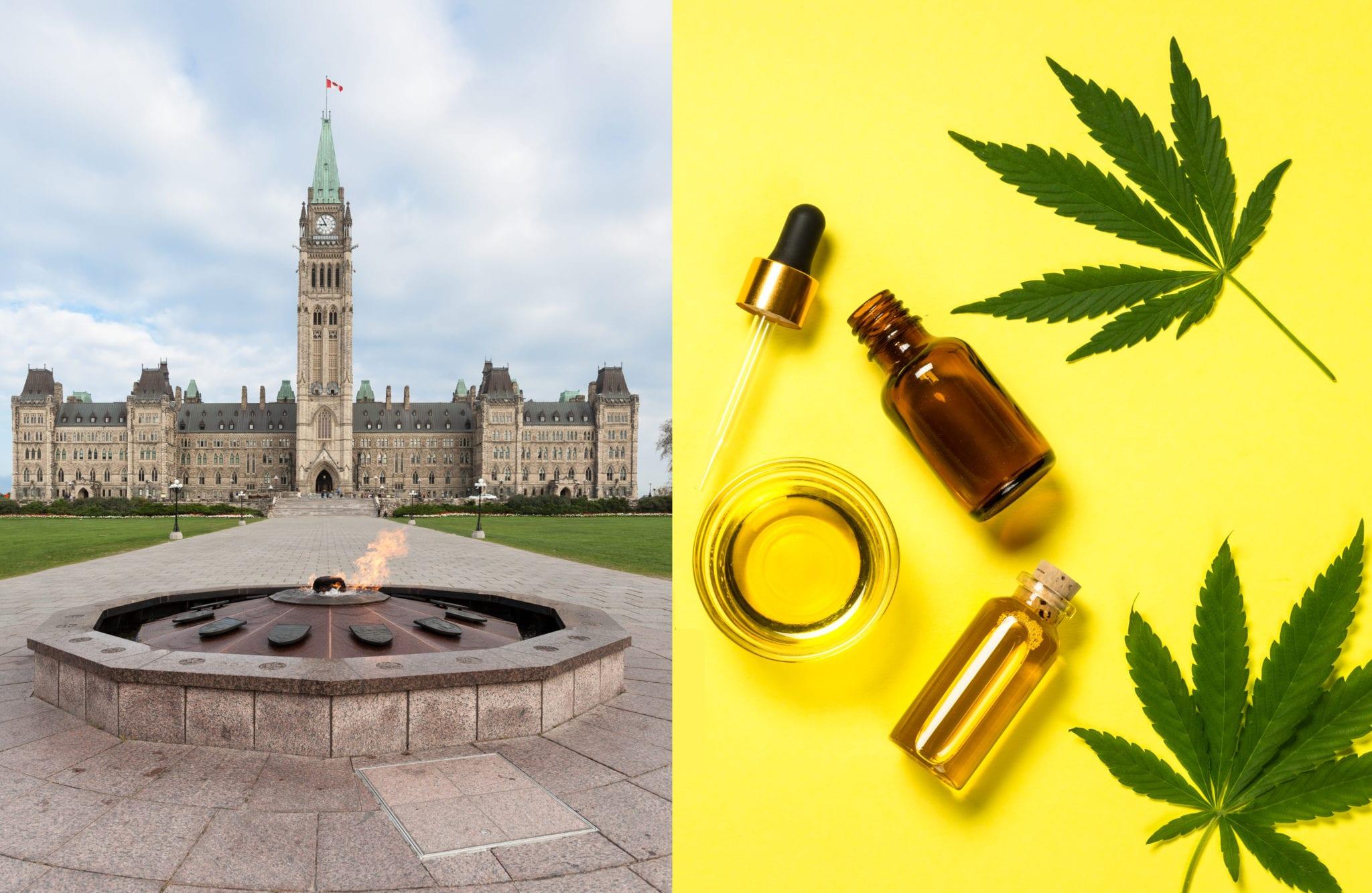 Ottawa's strict CBD rules blocks $2.5B market potential: report