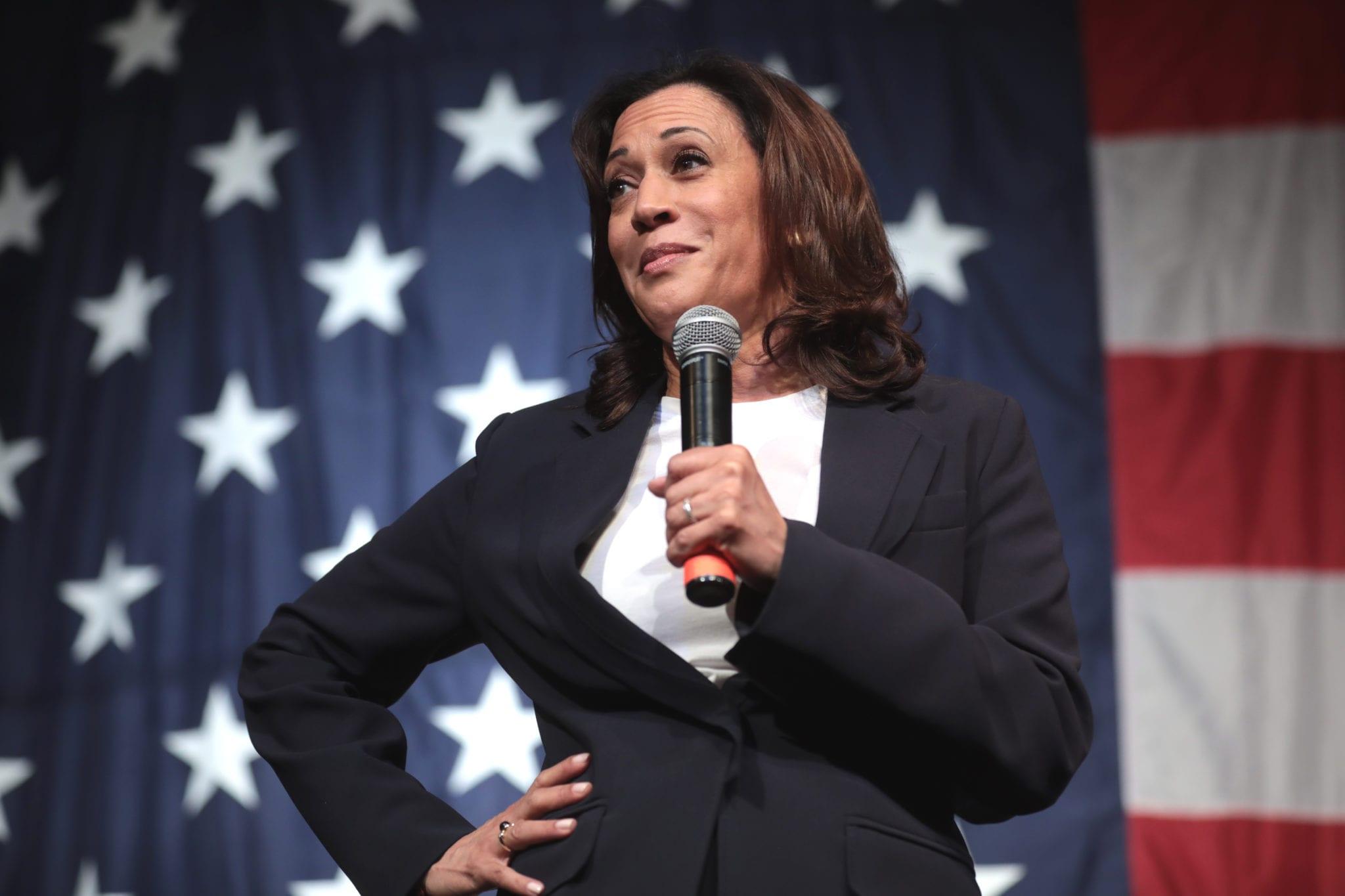 Cannabis stocks surge after Kamala Harris said Biden administration would decriminalize