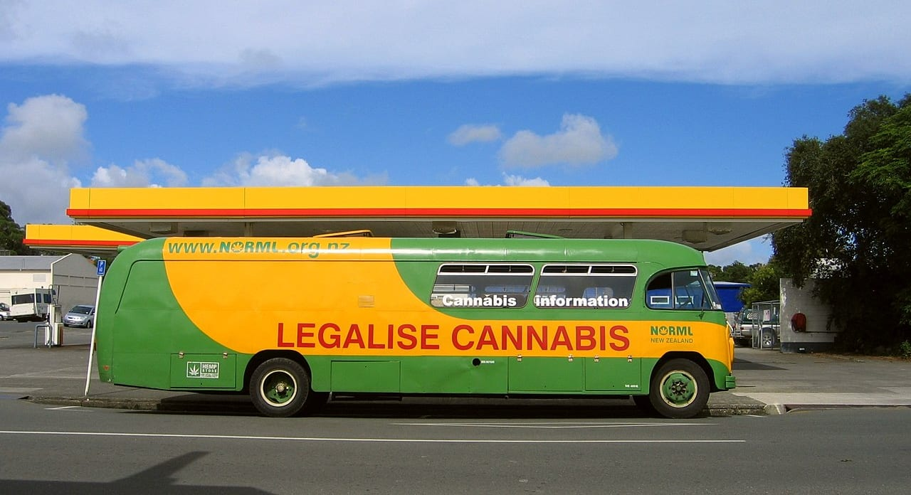 Why the New Zealand cannabis vote was late