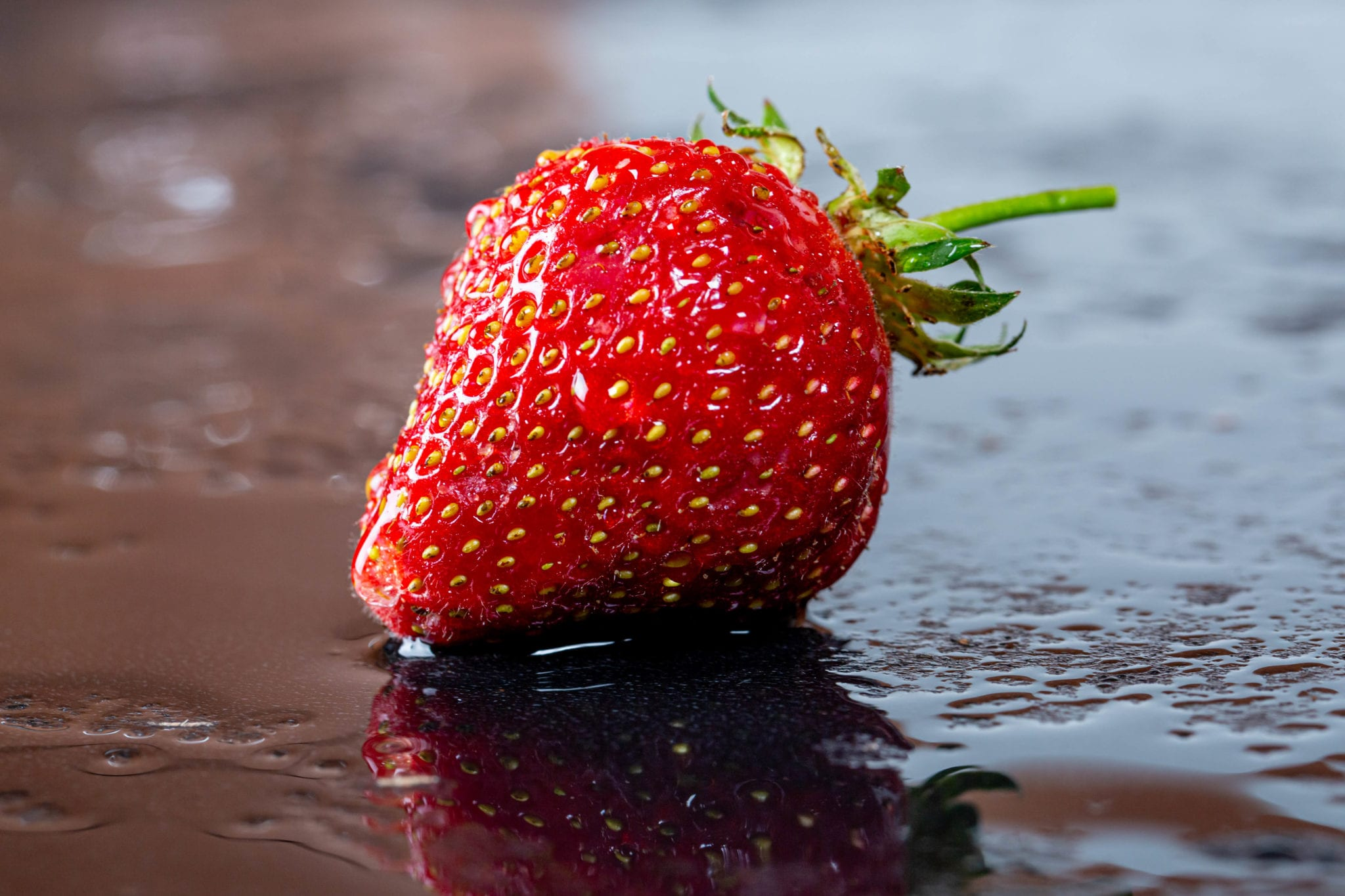 CBD oil on strawberries reduces mould, extends shelf life: study