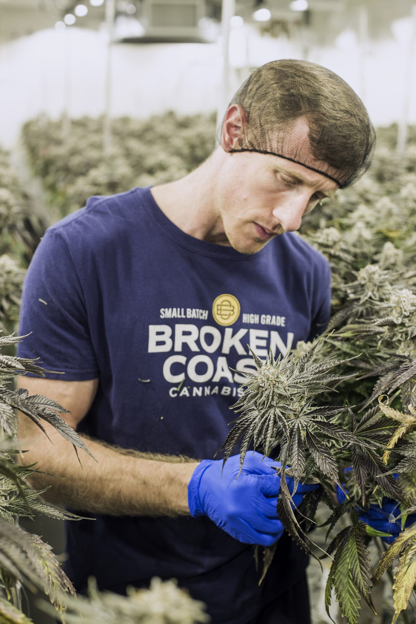 'No way to compromise on quality' - a conversation with Broken Coast's Kevin Anderson - portrait