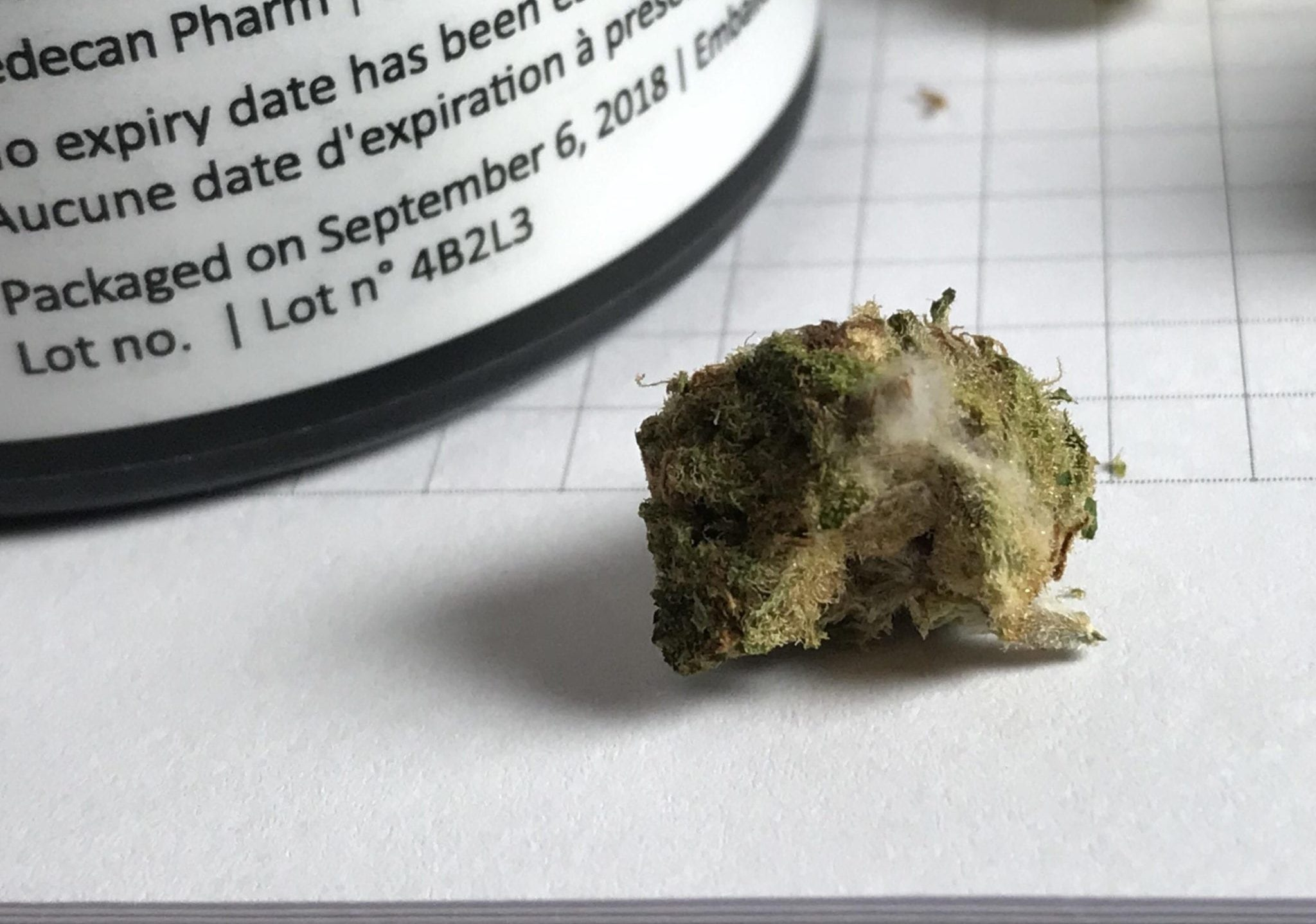 Slow provincial pot distribution channels continue to create issues like mould