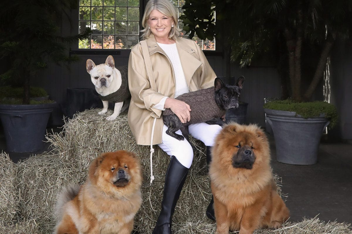 Martha Stewart and Canopy Growth release CBD dog treats — but are they safe?