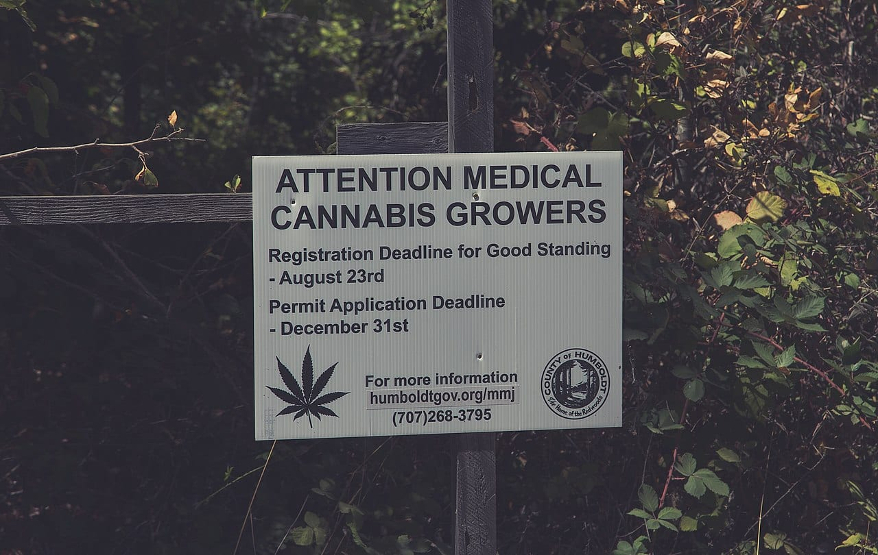 During Covid, California's toxic trespass grows have returned to pre-legalization levels - Humboldt sign