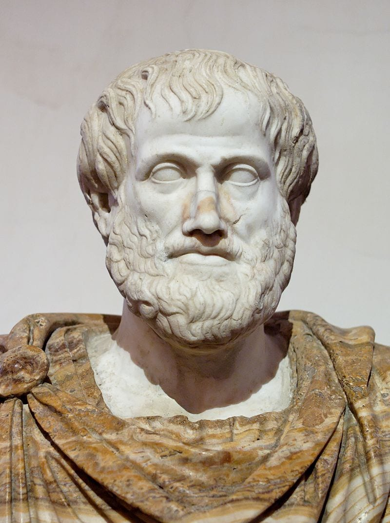 Nature amplifies therapeutic effects of psychedelics - study - Aristotle bust